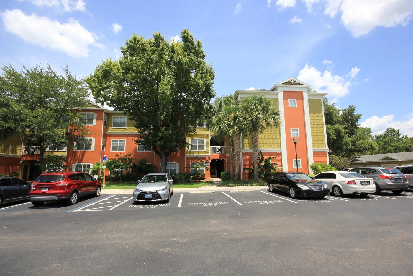 Tampa FL