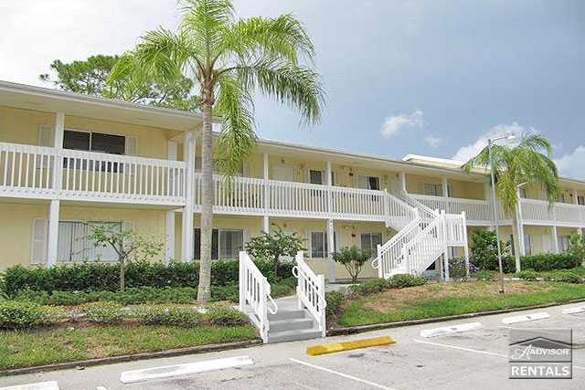 Pet Friendly for Rent in Abaco Bay