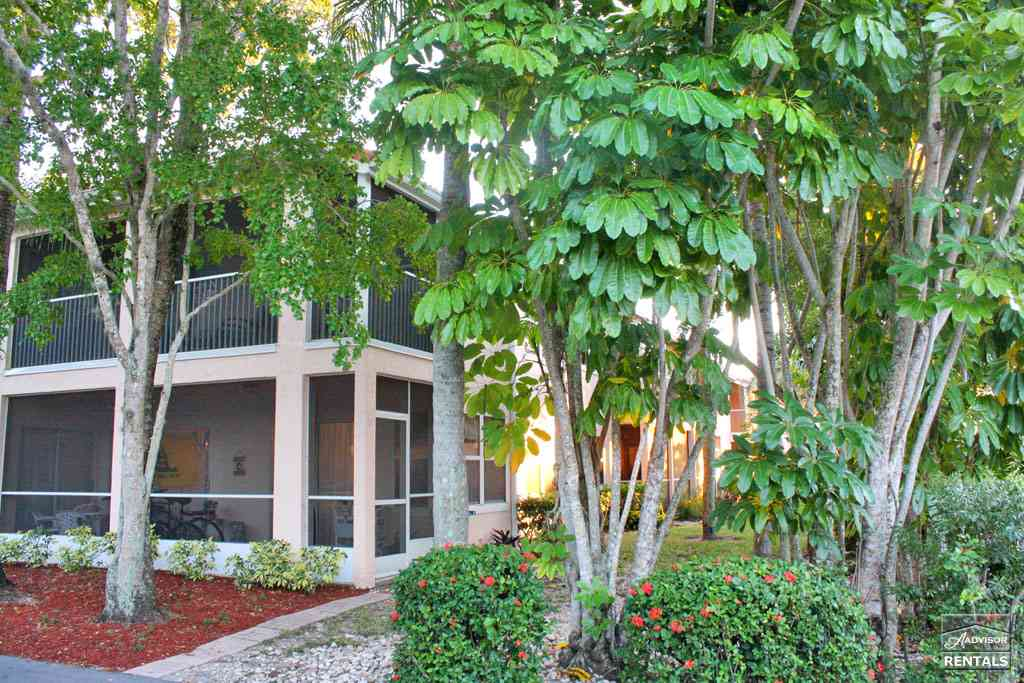 Pet Friendly for Rent in Forest Lakes