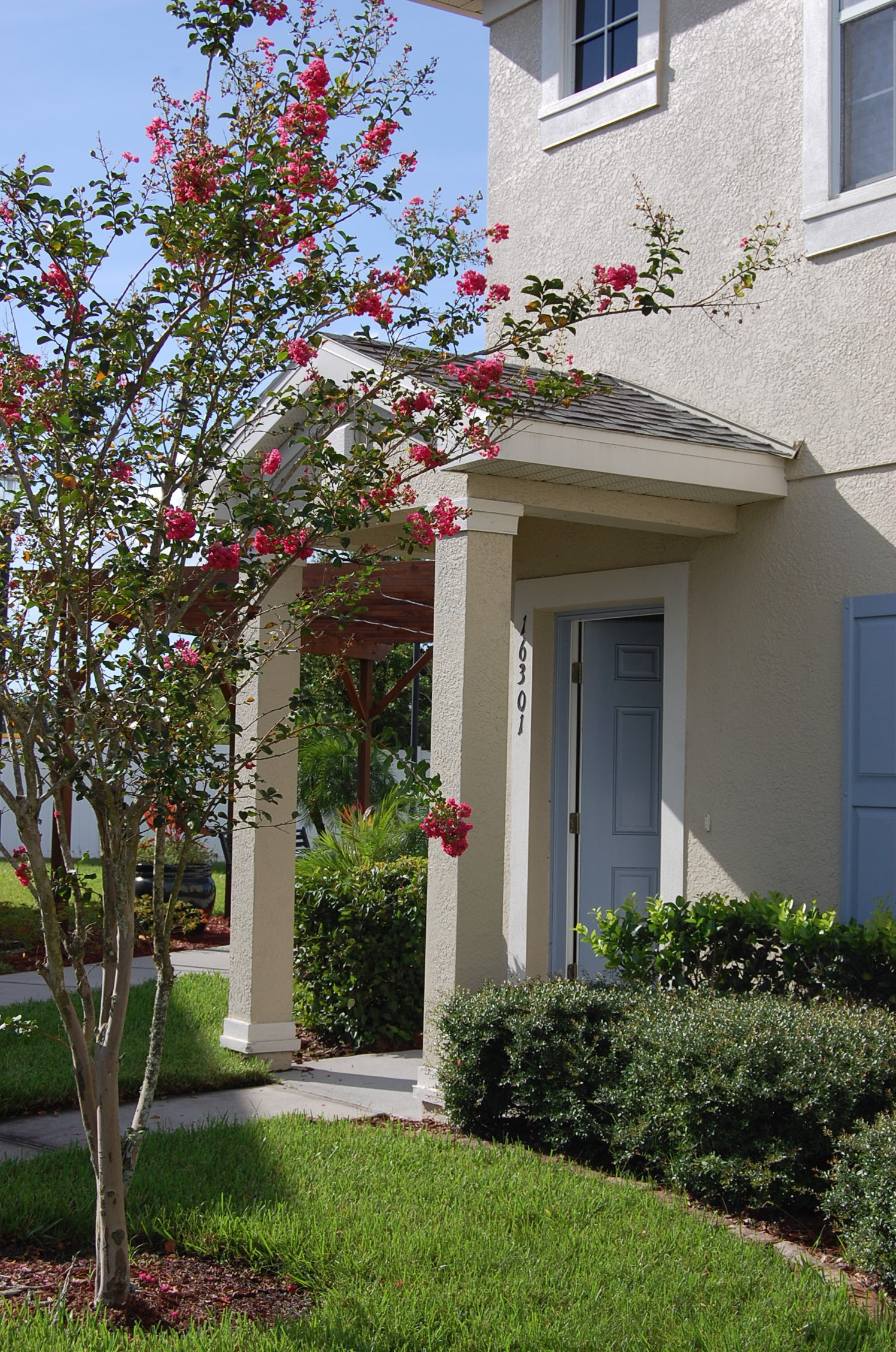 Apartments For Rent In Odessa Fl