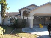 11432 Beechdale Ave, Spring Hill, FL, 34608