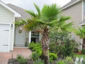 126 Turtle Cove, Panama City Beach, FL 32413
