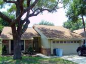 7407 Spring Villas Circle, Orlando, FL 32819