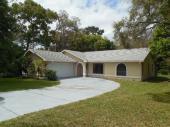 10099 Sleepy Willow Cir, Spring Hill, FL, 34608