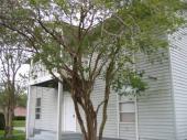1902 Staunton Avenue #UP, Winter Park, FL 32789