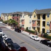 1910 E. Palm Avenue #8302, Tampa, FL 33605