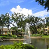 10102 Courtney Oaks Circle #202, Tampa, FL 33619