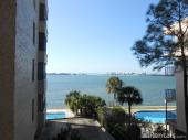 602 Lime Ave #203, Clearwater, FL 33756