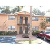 313 Oak Rose #101, Tampa, FL 33612