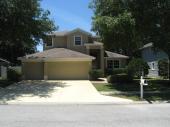 1081 Misty Hollow Lane, Tarpon Springs, FL 34688
