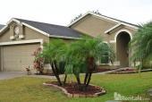 1739 Hulett Drive, Brandon, FL 33511