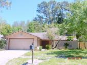 16603 Ashwood Drive, Tampa, FL 33624