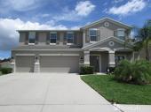 1310 Rushgrove Circle, Dover, FL 33527