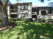 326 Woodlake Wynde, Oldsmar, FL 34677