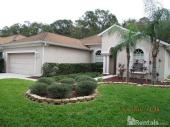 10534 Deerberry Dr, Land O Lakes, FL 34638