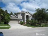 6610 Portland Oak Ct, Tampa, FL, 33647
