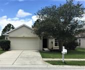 3307 Coconut Grove Rd, Land O Lakes, FL 34639