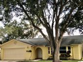 1890 Seton Ct, Clearwater, FL, 33763