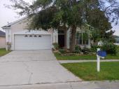 17353 Lawn Orchid Loop, Land O Lakes, FL 34638