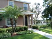 11678 Declaration Dr, Tampa, FL 33635