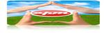 Custom Property Management of NWFL, L.L.C.